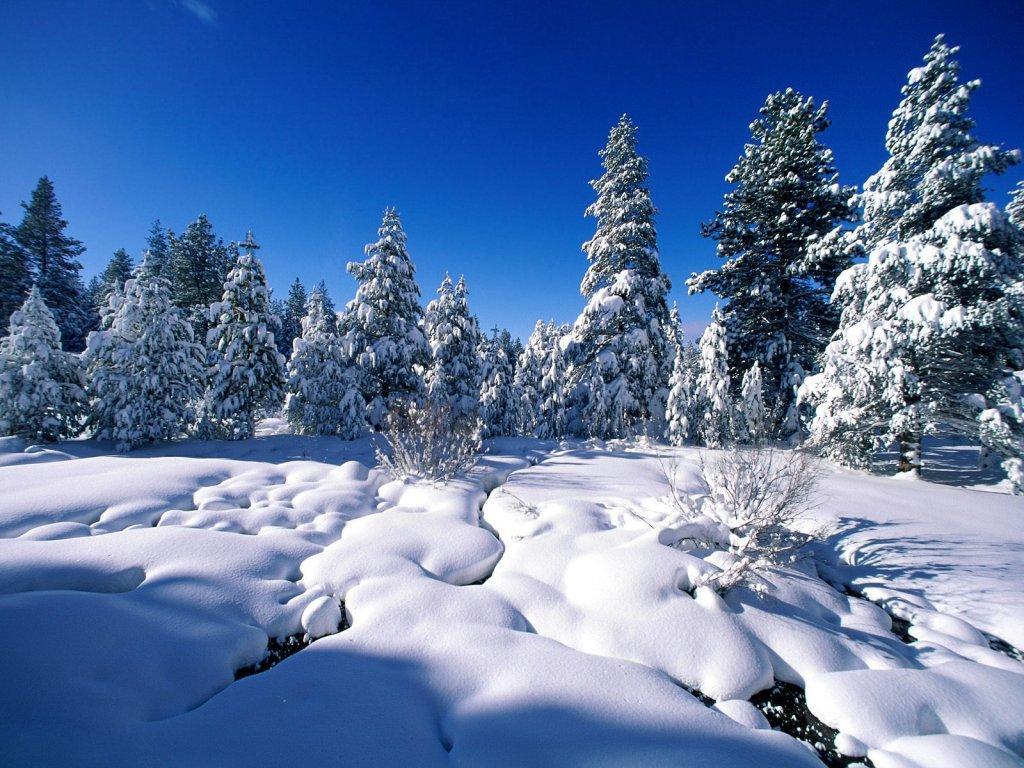 зима для о сайте