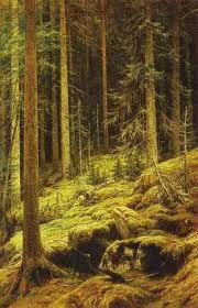 shishkin elov les